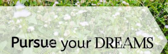 Pursue Your Dreams Picture